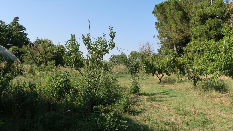 Terreno edificabile a San Mauro in Valle
